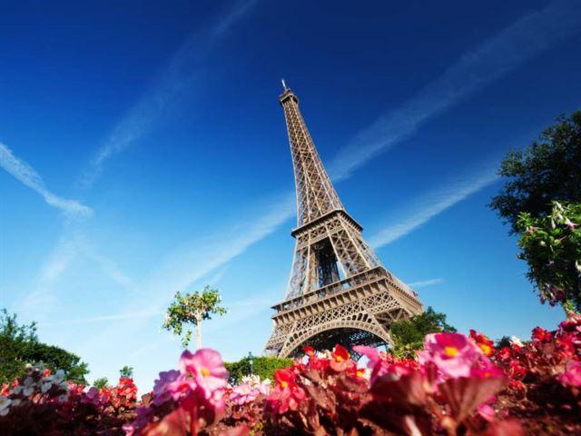 Paris tower.jpg